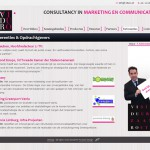Website Viduro Consultancy 2