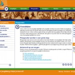 Website en intranet Rubicon jeugdzorg 2